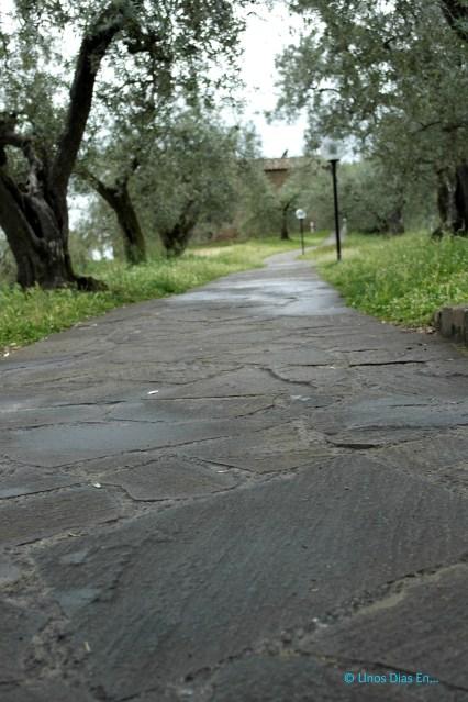 The road to Leonardo's birth house