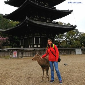 Japan, me posing with a cute deer ;)