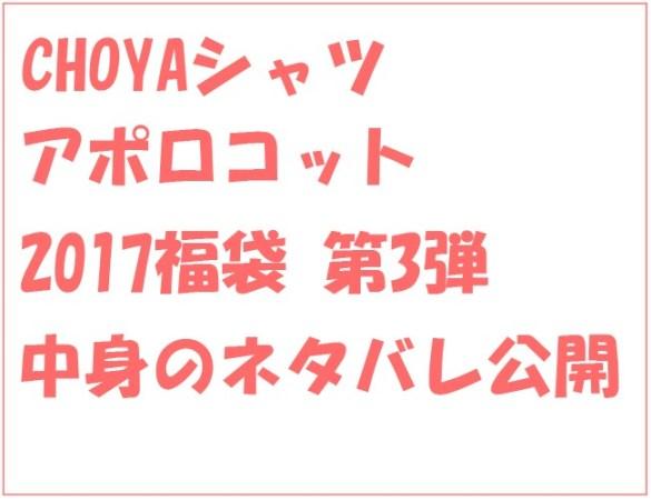 蝶矢シャツ2017福袋中身のネタバレ(2017年9月購入)は?本当にお得?