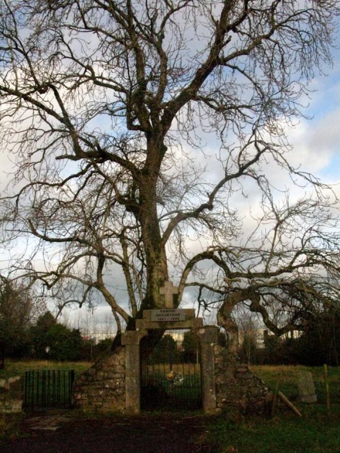 Famine graveyard Mullingar Co. Westmeath Ireland