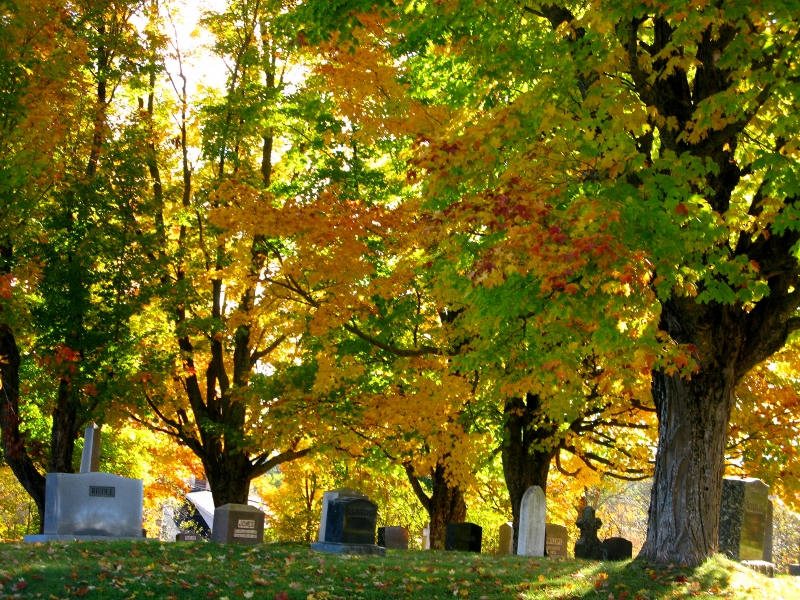 New Brunswick cemetery in the fall