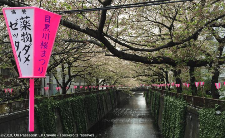 ©2019_Un Passeport_En_Cavale_Tokyo_Tous_droits_réservés_0022