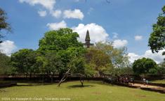 ©2019_Un_Passeport_En_Cavale_Polonnaruwa_Tous_droits_réservés_008