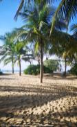 Copyright2019_Un_Passeport_En_Cavale_Les_Hebergements_2020_Sri_Lanka_045