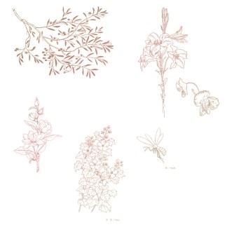 illustration_style_miiko_pamphlet