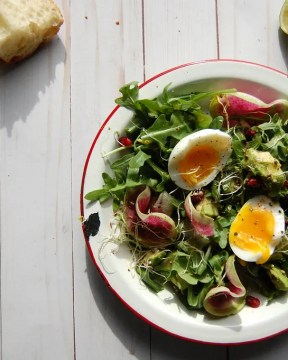 summer salad with watermelon radish and egg
