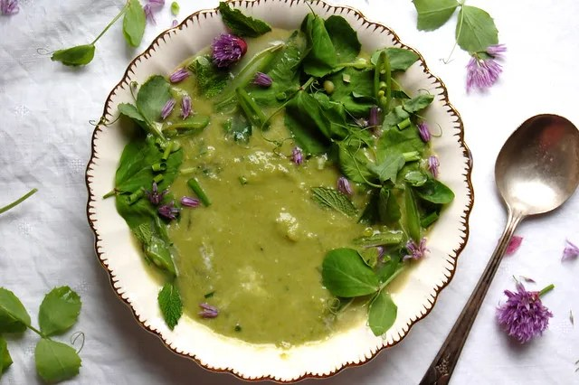 pea soup with green garnish in bowl