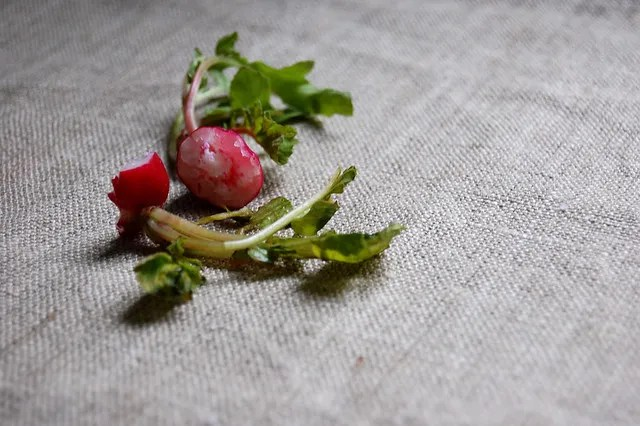 radish stems on brown tablecloth