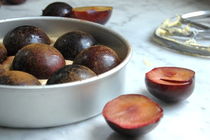 unbaked nytimes plum torte cake in baking pan with sliced plums