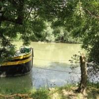 Les bords de Marne, entre Noisy-Le-Grand et Noisiel