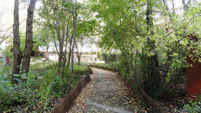 Jardin naturel, Paris 20e