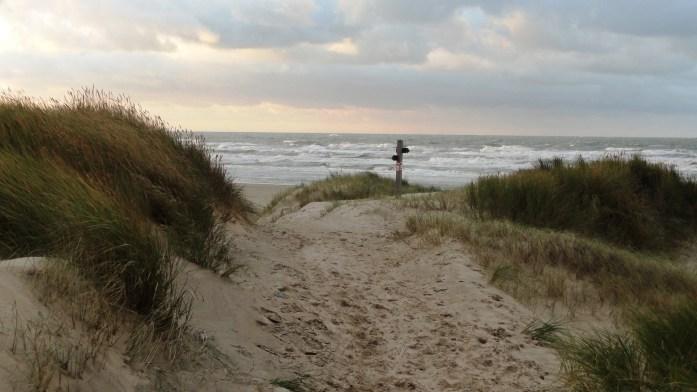 Plage de Bray-Dunes - Les dunes