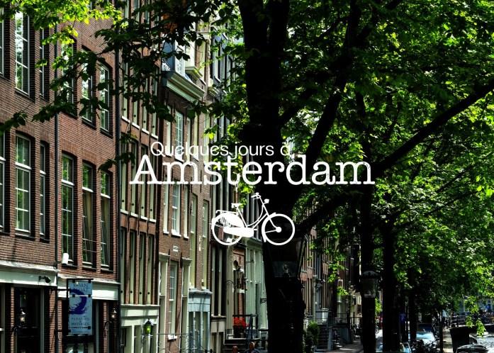 Amsterdam, Capitale du cool et des chats