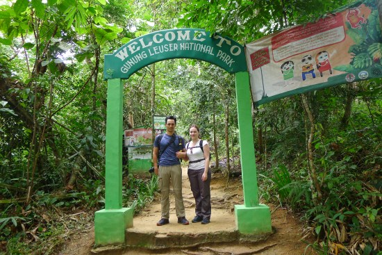 Welcome to Gunung Leuser