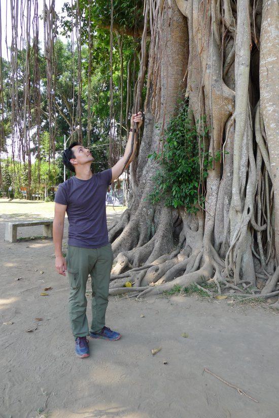 Damien se prendra pour Tarzan en s'accrochant aux lianes