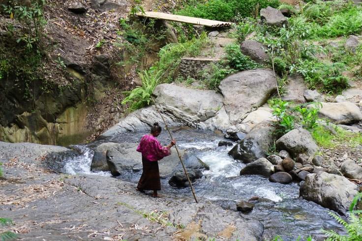 Quand une habitante préfère traverser une rivière que prendre le pont de bambou... On l'a quand même tenté !