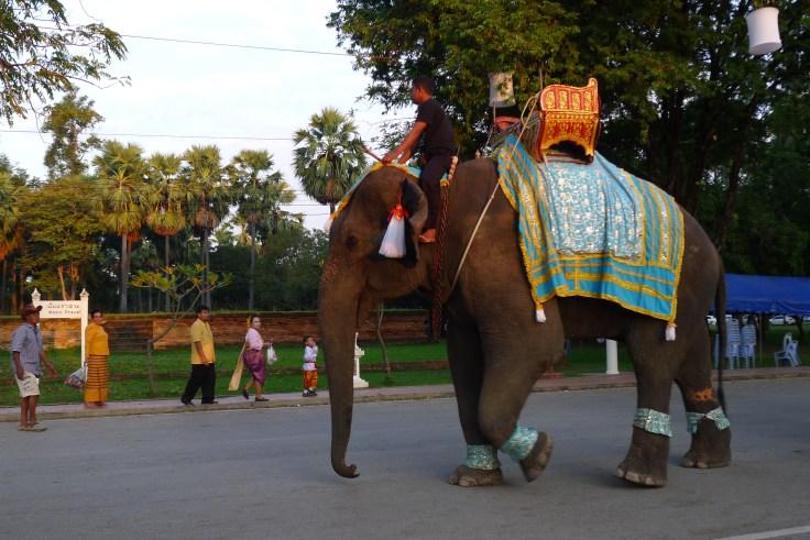 Sukhothai elephant
