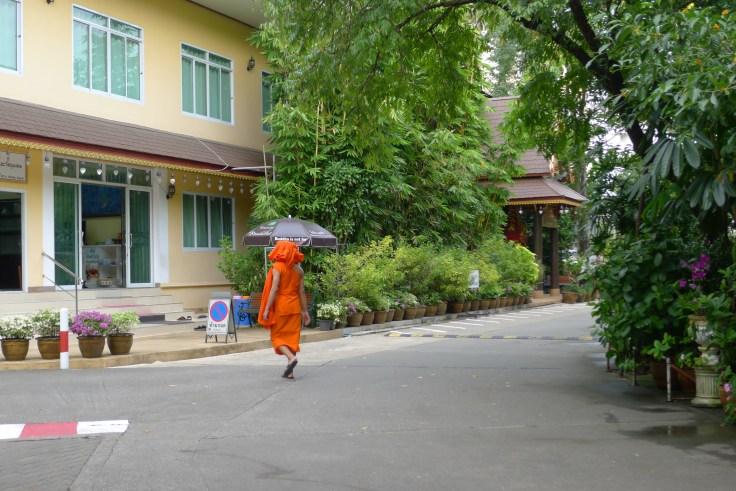 Chiang Rai Wat Phra Kaew Monk