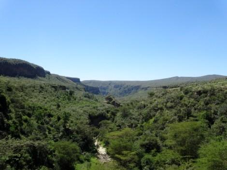 Paysage canopée sur Hells Gate National Parc