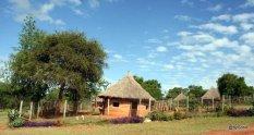 chenil-nairobi