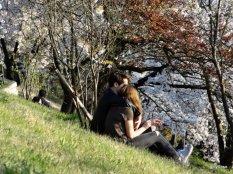 Amoureux-Berne-printemps