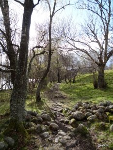 Loch-Kinord-Scotland