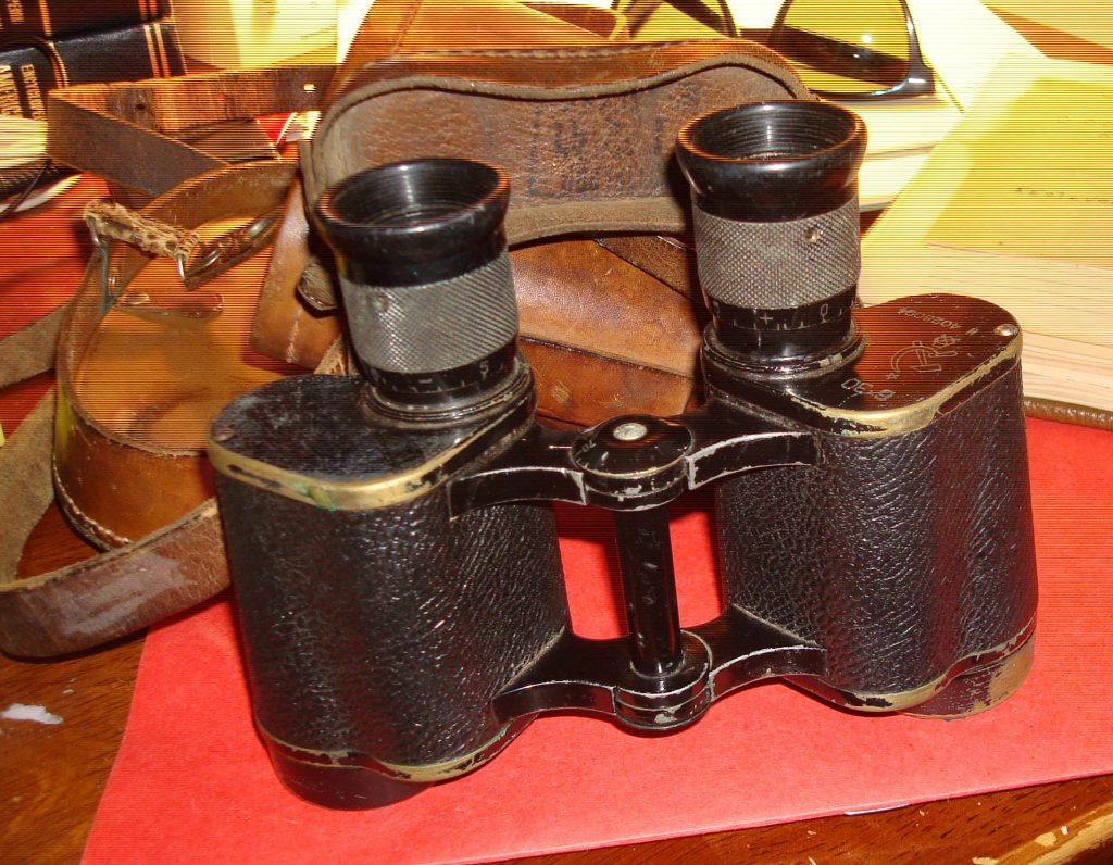 the field glasses