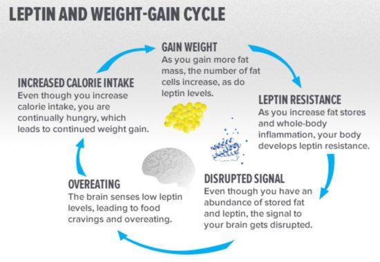 leptin resistance
