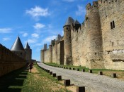 Carcassonne-lepoissonMarcel