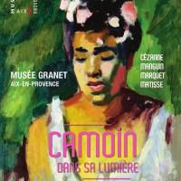 L'exposition Camoin au Musée Granet