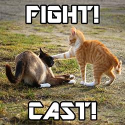 fightcastshowpage
