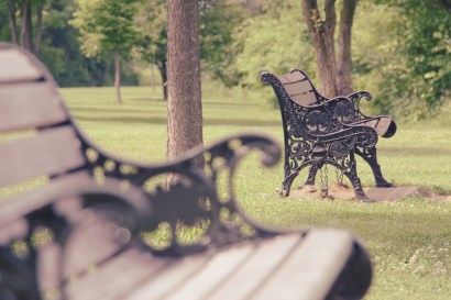 Parks Bench III