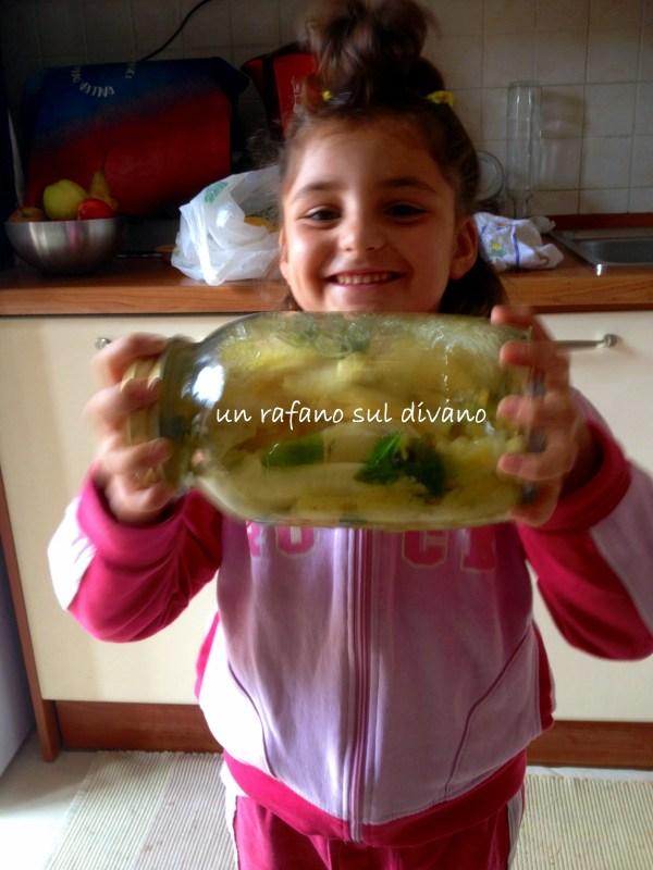 limoncello-rafano-sul-divano
