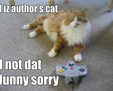 Cats and Video Games: A Photo Essay