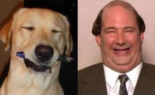 Celebrity Dogs 13