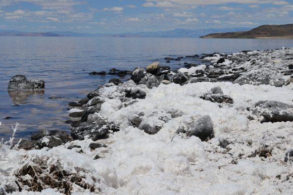 Salt on Rocks