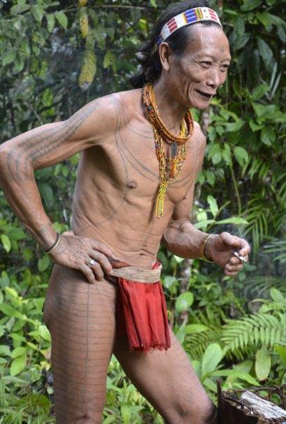 Mentawaiweb