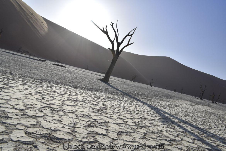 Dune de Namibie