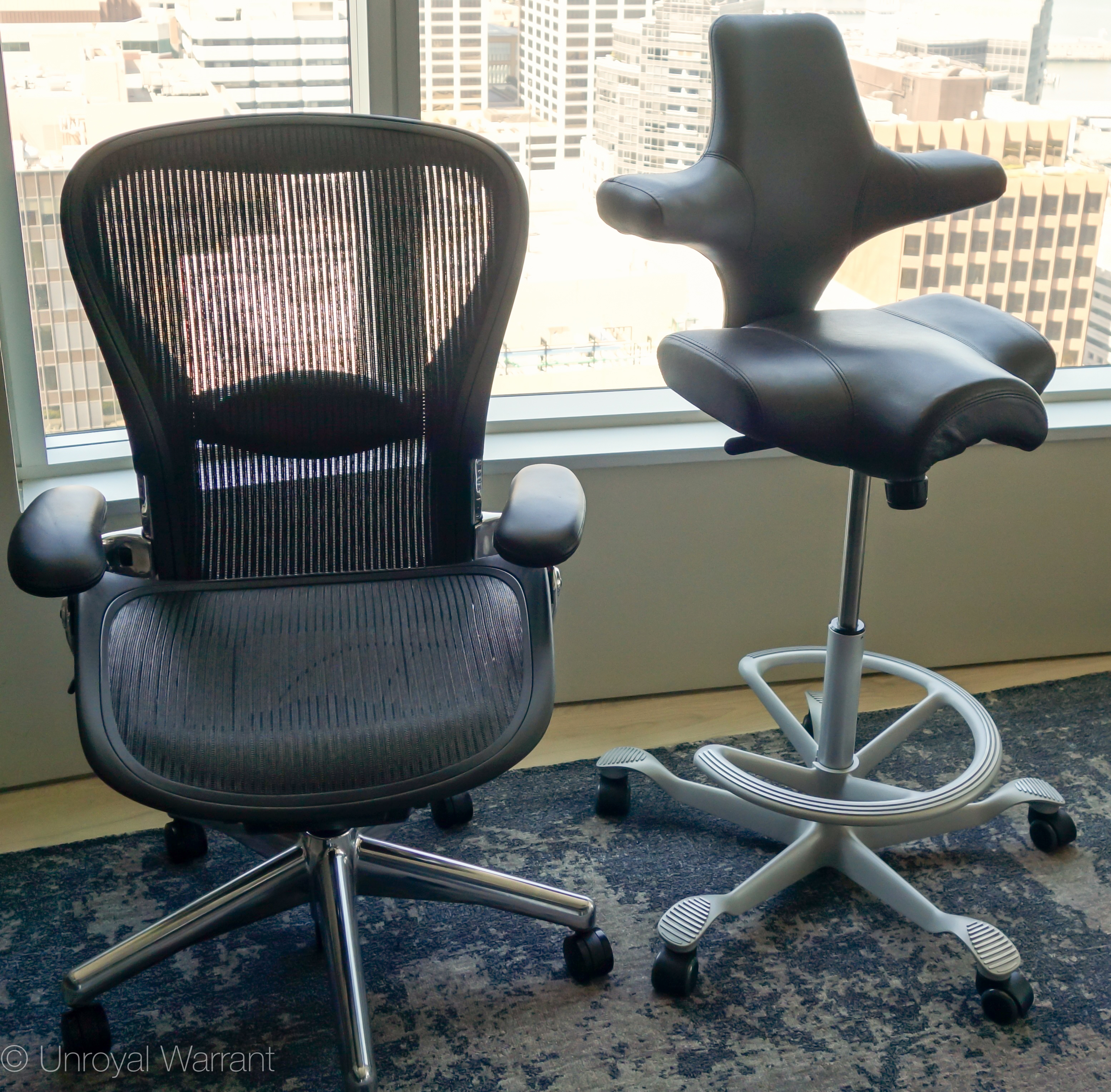 Hg Capisco Office Chair  THE UNROYAL WARRANT