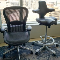 Ergonomic Chair Options Antique Chippendale Chairs Value Håg Capisco Office  The Unroyal Warrant
