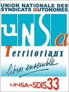 Logo-UNSASDIS33-Portrait-Couleur-HD