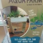 How set up your Home Aquaponics Kit