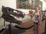 T-Rex scule
