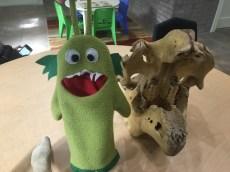 Gloups posing with Manatee skeleton head
