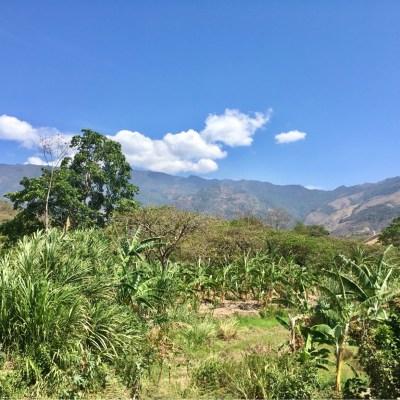Macara scenery