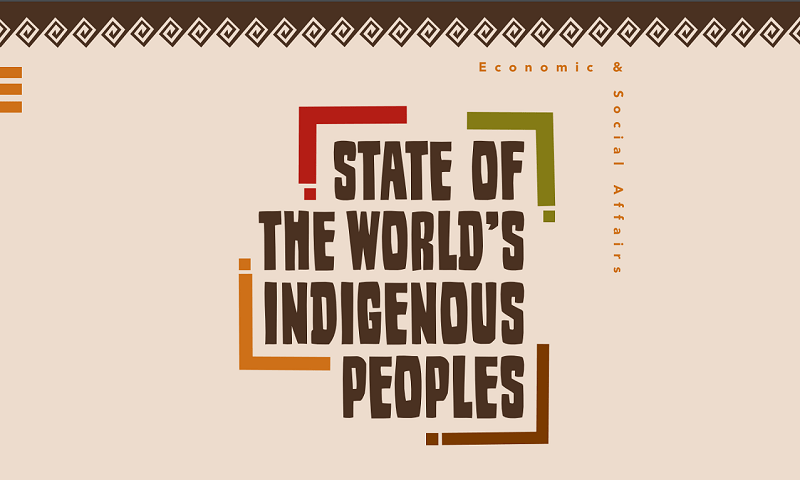State of the World's Indigenous Peoples, Volume 2: Health