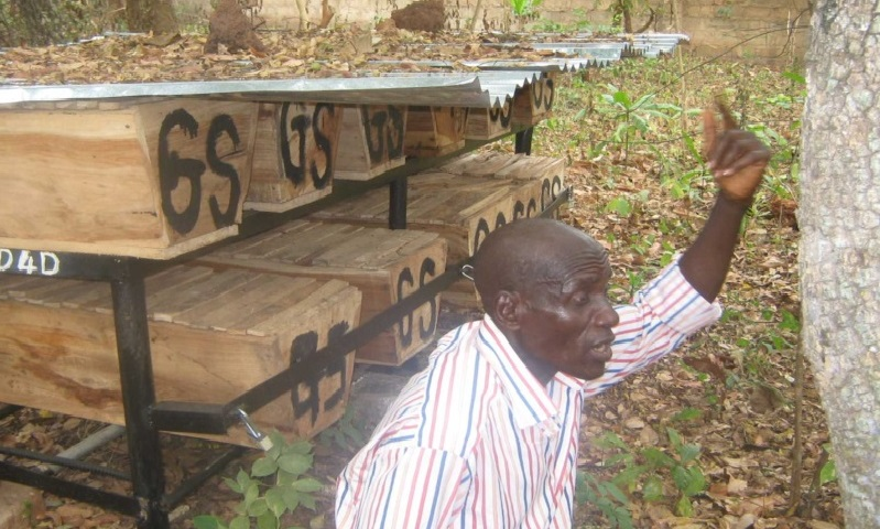 BEEKEEPING: An Effective Means To Eradicate Poverty