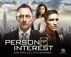 Person of Interest, Series