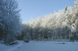 Winter-Aschbach20 (1)