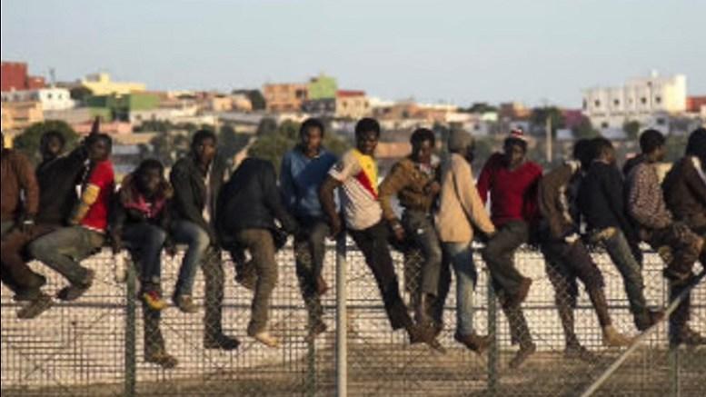 """Asylsuchender Afrikaner tritt """"nahezu täglich polizeilich in Erscheinung"""""""